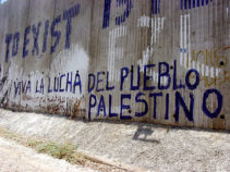 Viva la Lucha Palestina on the wall