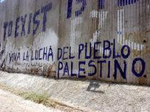Viva la Lucha Palestina on the wall