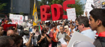Read more about the article Boycotting Occupation: Educators and Palestine