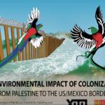 Environmental-Impact-of-Colonization